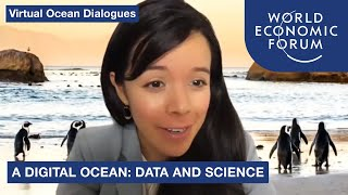 A Digital Ocean: Data and Science   Virtual Ocean Dialogues