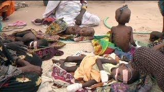 Afrika'da 15 milyondan fazla insan açlıktan ölebilir