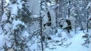 Армия Финляндии. Финские егеря. Вооружение.