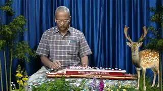 Neele Gagan Ke Tale HAMRAAZ 1967 Karaoke Cover Bulbul Tarang Played by H Hanumanthaiah