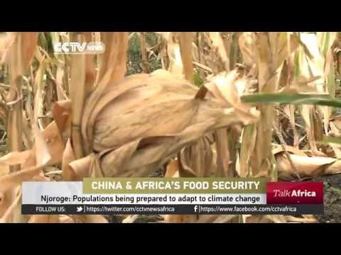 Talk Africa: China Africa Agriculture Co operation