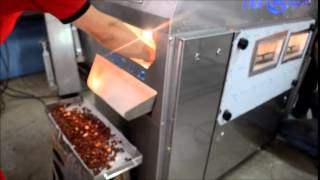 Nuts Roasting Machine Ozstar