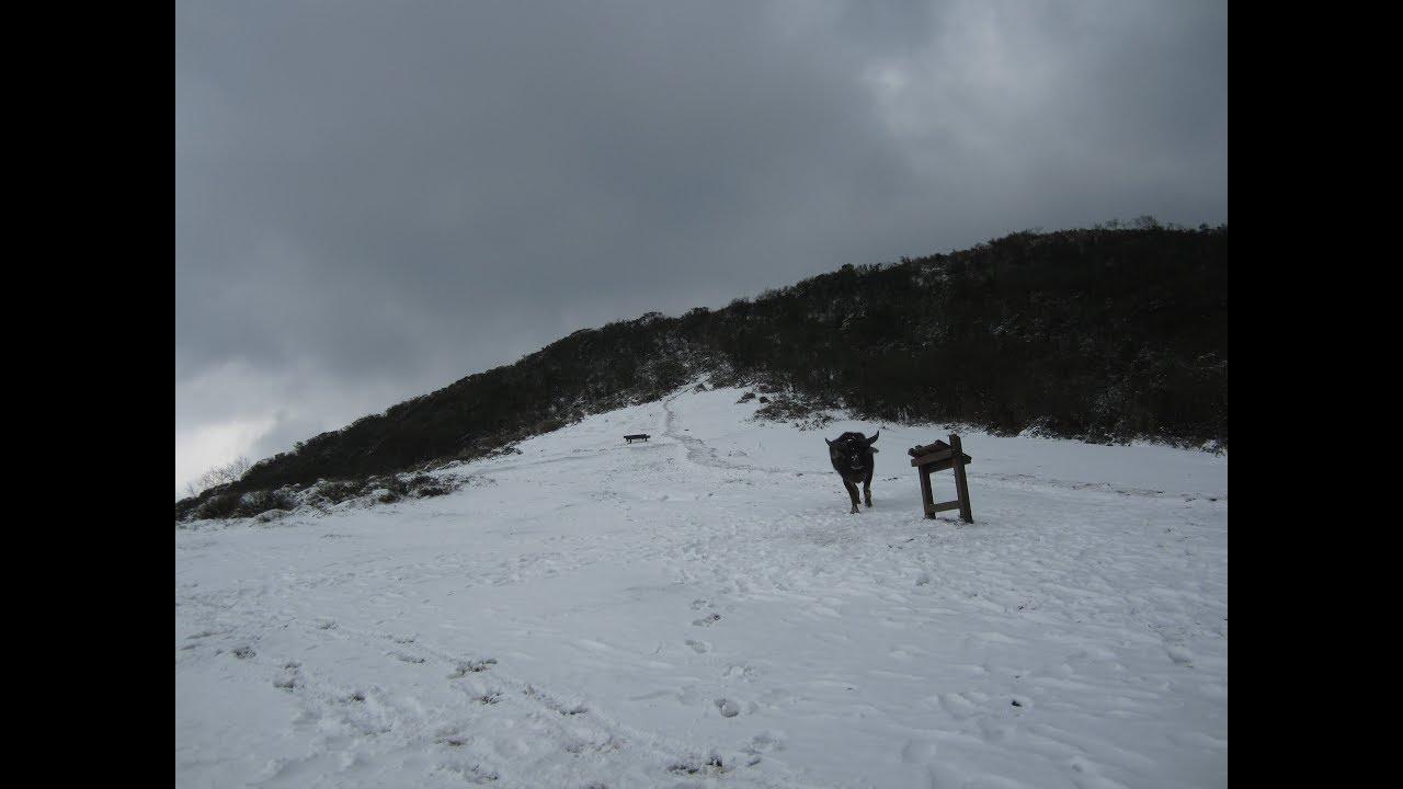 我父親的雪季陽明山縱走回憶 - YouTube
