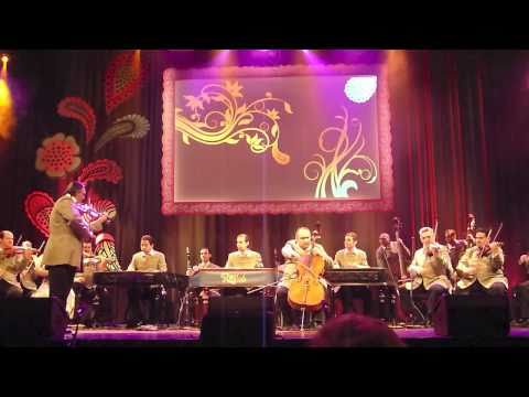 Rajkó Band (Hungarian Gypsy Orchestra) - live @ 5th Roma Platform Meeting (Budapest, 7.4.2011)