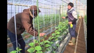 2013年3月26日(火) AGRI CRAFT×ザ・クレータpresents 『VEGEON...
