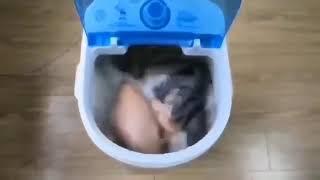 Máy Giặt Gia Đình Mini Cao Cấp 2
