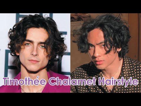 timothée-chalamet-inspired-hairstyle-tutorial