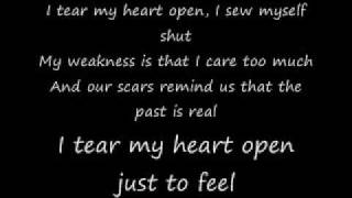 papa roach - scars acoustic lyrics