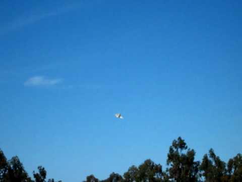 Download US Navy F-4 (Phantom)