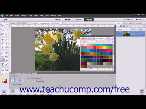 Photoshop Elements 13 Tutorial Selecting Colors With The Swatches Panel Adobe Training