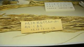 History of Hokkaido rice cultivation Old shimamatsu Ekitei office Nationally designated historic sit