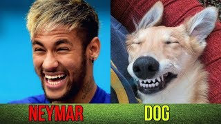 Football Players Who Look Like Animals ● ft. Ronaldo, Messi, Neymar, Ibrahimovic...