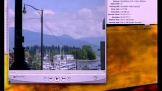 Gambar cover Apple WWDC 2003 Session 703 - The Pro in QuickTime Pro