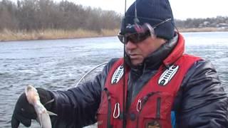 Рыбалка по-лугански нерест щуки.