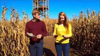 "Richardson ""world's Largest"" Corn Maze"