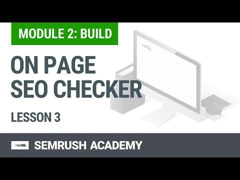 Module 2 Lesson 3 - On Page SEO Checker