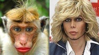 Животные, которые очень похожи на знаменитостей