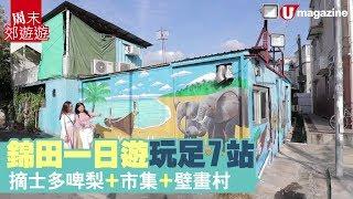 【#周末郊遊遊】錦田摘士多啤梨+市集+壁畫村!玩足 7 站一日遊