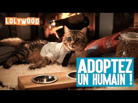Adoptez un humain !Kaynak: YouTube · Süre: 2 dakika2 saniye