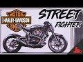 Harley-Davidson Streetfighter Sport Bike - First Look!