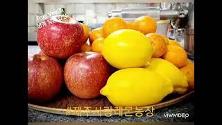 #유기농레몬의 항산화 쥬스만들기!!! #유기농레몬 #친…