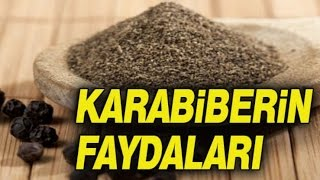 Video Karabiber'in Bilinmeyen Faydaları download MP3, 3GP, MP4, WEBM, AVI, FLV Desember 2017