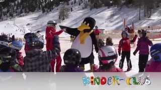 Pinguin BOBO