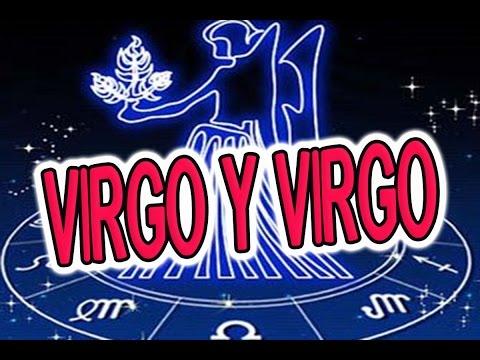 evirgo y virgo son compatibles en el amor