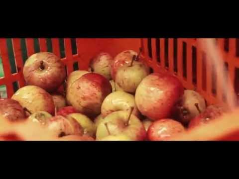 Apples To Alcohol - Artisan Cider Production
