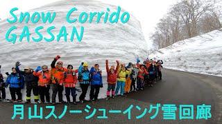 月山ECOPRO:2020.03.29.月山スノーシューイング 雪回廊