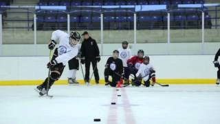 Elite Hockey Skills Training