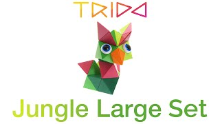 Trido Jungle Large Set - How to build an Exotic Bird
