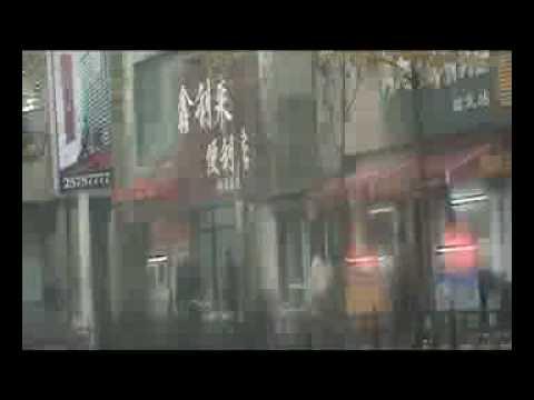 Kimjongilia - Escaping from China
