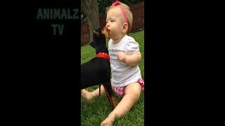 New Funny Videos pranks 2018 - Try Not To Laugh - Funny videos - Funny Fails of 2018 #10