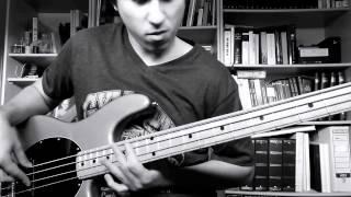 Jason Derulo - Kiss the sky (Bass cover)