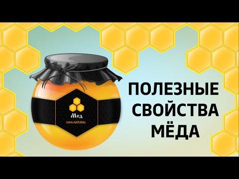 Дикий мёд полезные свойства и противопоказания