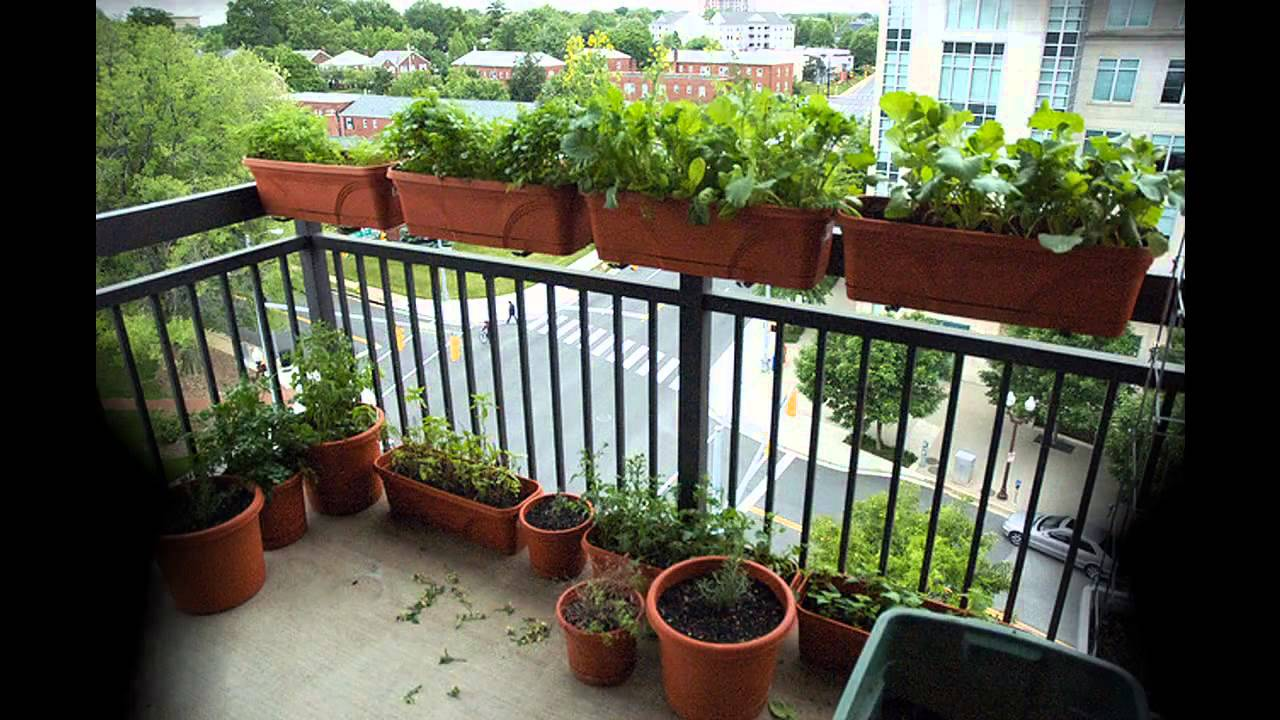 Garden ideas apartment gardening ideas youtube for Apartment patio garden design ideas