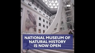 National Museum for Natural History officially opens today