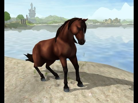 star stable online instagram video my new mustang droppie youtube. Black Bedroom Furniture Sets. Home Design Ideas