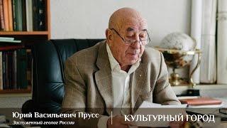 Юрий Прусс - Философия Развития