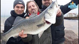 Kıyıdan Devasa Levrek!! Yakaladığımız En Büyük Balık!!  - 26 Ocak 2019