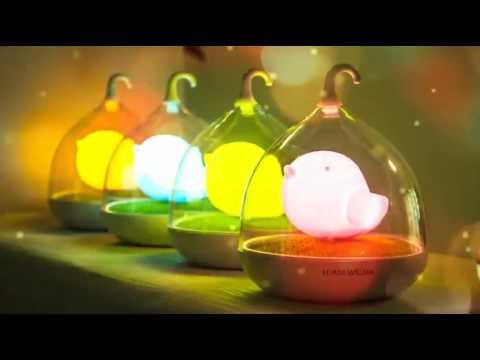Birdcage lamp led night lamp mini usb light youtube - Birdhouse nightlight ...