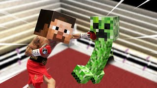 i-hosted-a-minecraft-boxing-competition