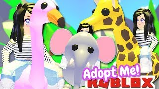 RIDING EVERY 🦁SAFARI PET🦁 dans ADOPT ME (fr) ROBLOX LEGENDARY