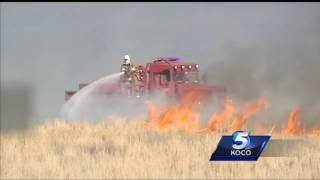 200 head of cattle killed in northwest Oklahoma wildfire