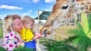 Giraffe animal video! Funny KIDS vs ZOO ANIMALS are WAY FUNNIER! TRY NOT TO LAUGH