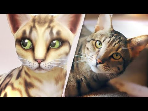 MAKING MY REAL PET // SAVANNAH CAT | THE SIMS 4 CATS AND DOGS