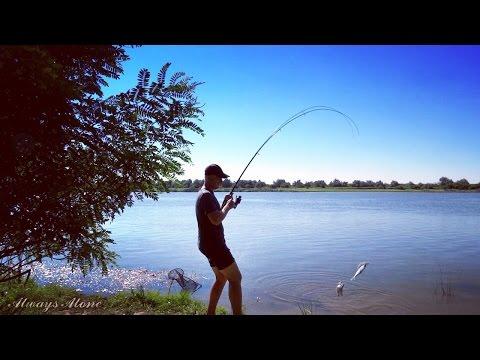 Ловля на закидушку (донку). Рыбалка на мотоцикле.