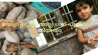 പുളിങാച്ചിരി|  kid's expression while eating tamarind| pulingaachiri