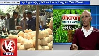Techniques for Muskmelon cultivation by Retd Prof Dr Rama Subba Reddy - Sagubadi